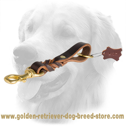 Golden Retriever Leather Leash with Fancy Braids