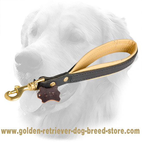 Golden Retriever Leather Leash with Handle