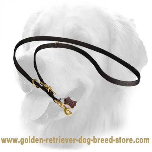 Golden Retriever Nylon Leash for Different Dog Activities