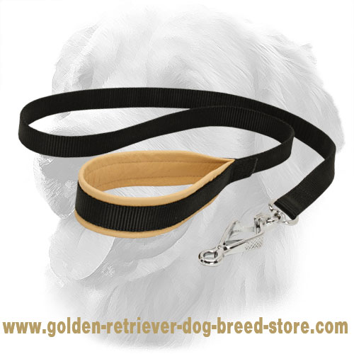 Golden Retriever Nylon Leash with Solid Snap Hook