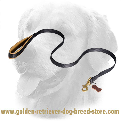Golden Retriever Nylon Leash with Comfortable Handle