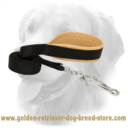 Golden Retriever Nylon Leash with Convenient Handle