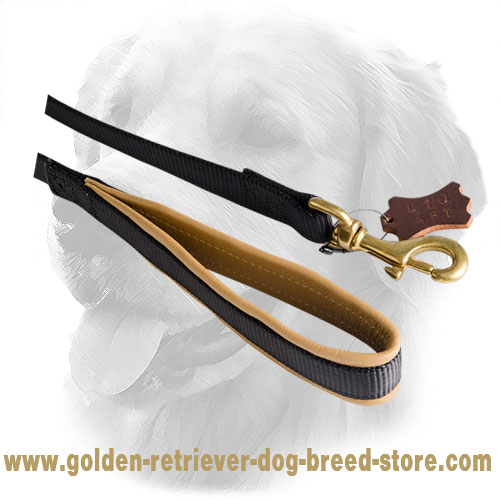 Nappa Padded Handle on Golden Retriever Nylon Leash