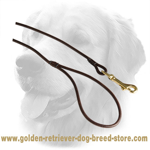 Brass Snap Hook on Leather Golden Retriever Leash