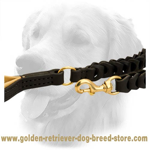 Brass Fittings on Leather Golden Retriever Leash