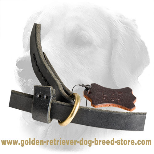 Brass O-Ring on Leather Golden Retriever Slip Leash