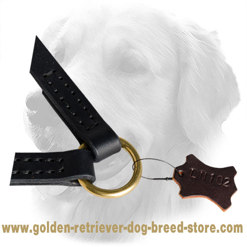 Brass O-Ring on Golden Retriever Leather Coupler