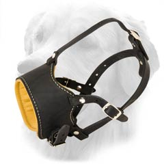 Leather Muzzle with Unique Design