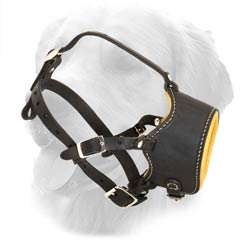 Leather Muzzle for Sport Activities