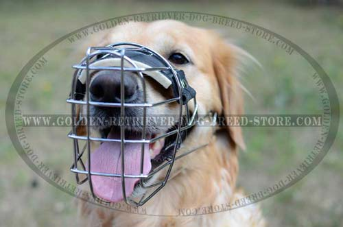 Metal Cage Wide Muzzle Perfect for Everyday Use