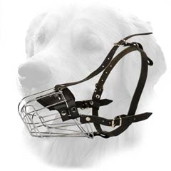 Universal Wire Cage Muzzle for Walking