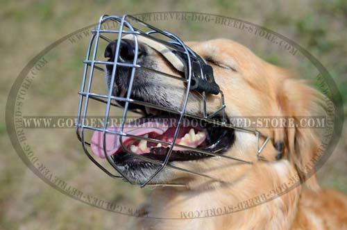 Durable Metal Cage Muzzle with One Strap