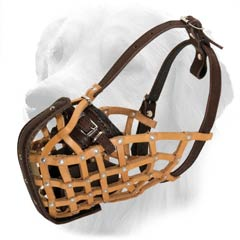 Tan Leather Muzzle with Adjustable Straps