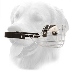 Golden Retriever Ultra Durable Metal Dog Muzzle One  Strapped