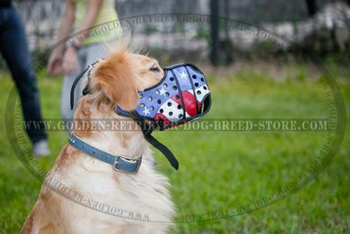 Leather Golden Retriever Muzzle with Flag Painting