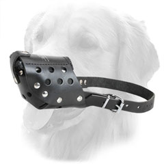 Easily Adjustable Golden Retriever Muzzle