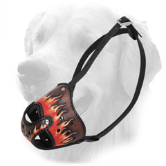 Golden Retriever Muzzle with Perfect Air Flow