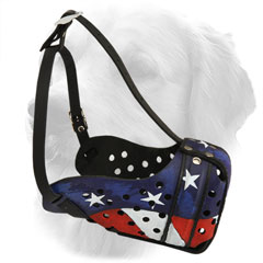 Golden Retriever Muzzle with USA Flag Painting