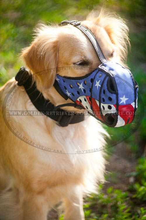 Leather Golden Retriever Muzzle with Good Air Flow