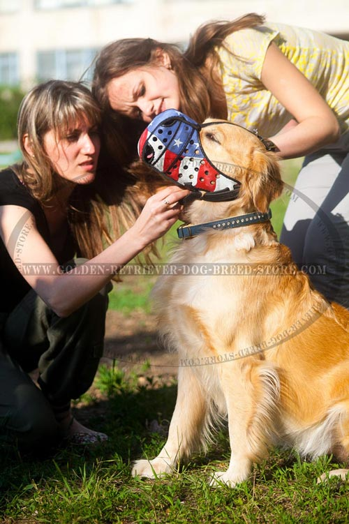 Leather Golden Retriever Muzzle for Walking