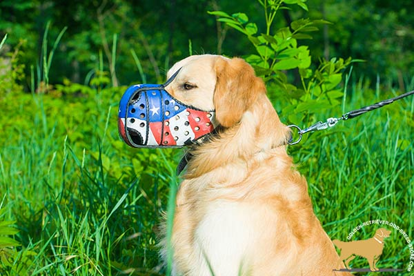 Golden-Retriever leather muzzle for air circulation with ventilation holes for better comfort