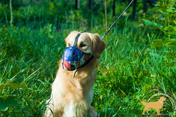 Golden-Retriever leather muzzle anti-barking padded for utmost comfort