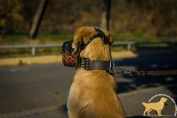 Golden-Retriever leather muzzle of genuine materials with adjustable straps for basic training