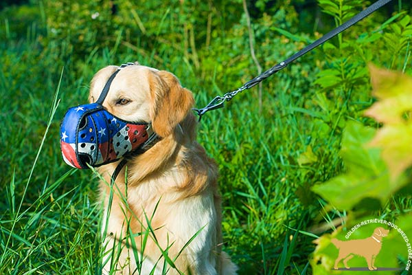 Golden-Retriever leather muzzle anti-barking with nose padding for agitation training