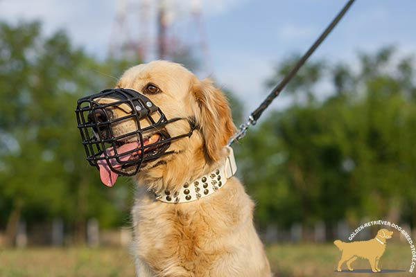 Golden Retriever wire cage muzzle for air circulation adjustable  for safe walking