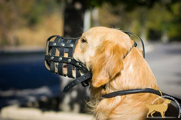 Leather Golden Retriever Basket Muzzle with Great Ventilation