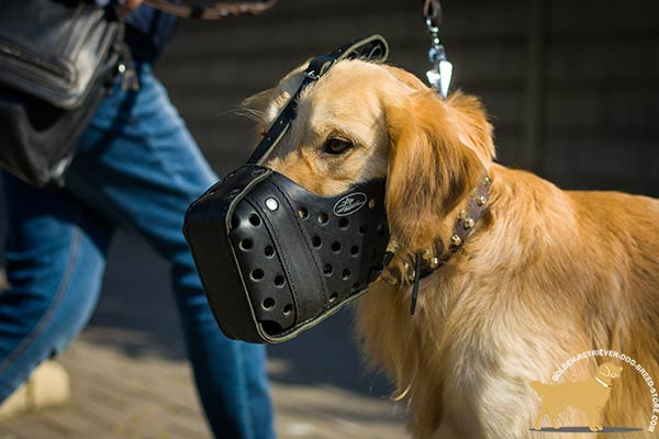Easy-to-adjust Leather Golden Retriever Muzzle with Soft Padding