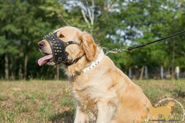 Nappa Padded Golden Retriever Muzzle for Free Breathing