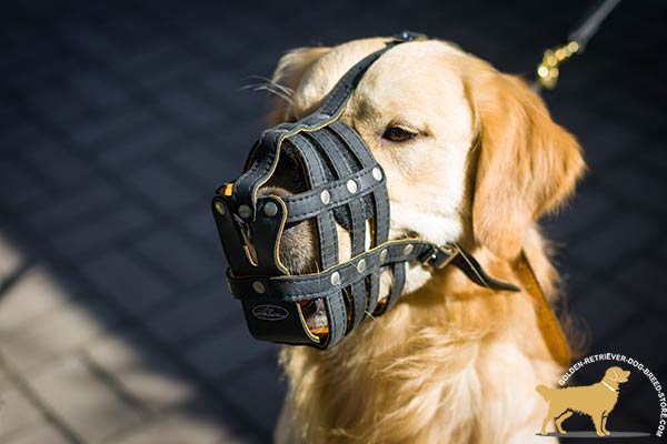 Handcrafted Leather Dog Muzzle with Padding on Nose
