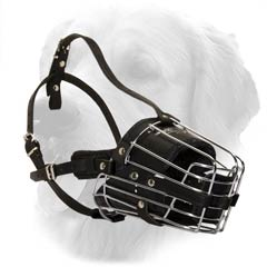 Metal And Leather Basket Muzzle