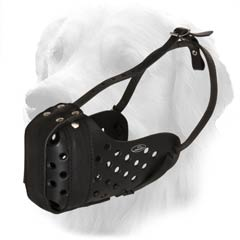 Hq Leather Muzzle For Golden Retrievers