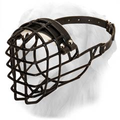 Golden Retriever Rubber Covered Cage Muzzle